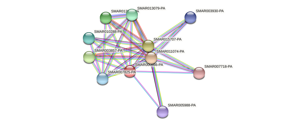 SMAR000866-PA protein (Strigamia maritima) - STRING interaction network