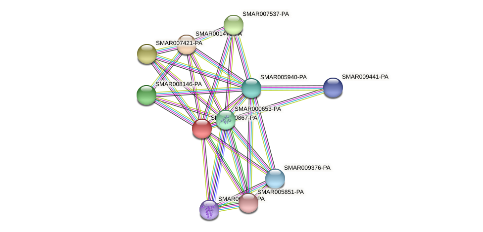 SMAR000867-PA protein (Strigamia maritima) - STRING interaction network