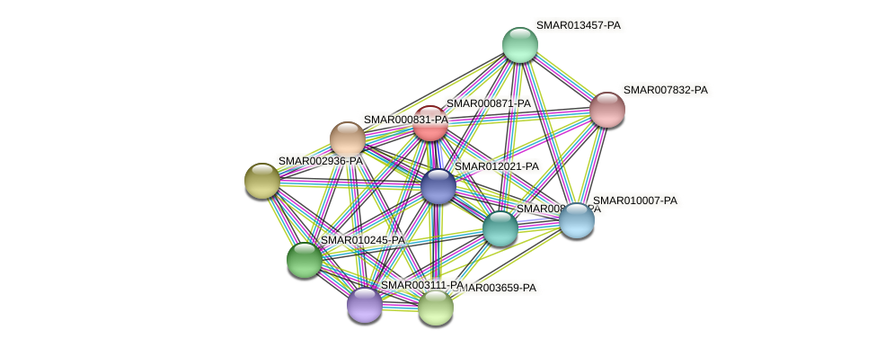 SMAR000871-PA protein (Strigamia maritima) - STRING interaction network
