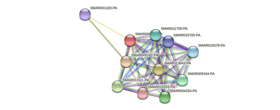 SMAR000884-PA protein (Strigamia maritima) - STRING interaction network