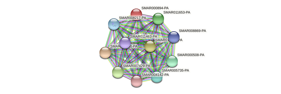 SMAR000894-PA protein (Strigamia maritima) - STRING interaction network