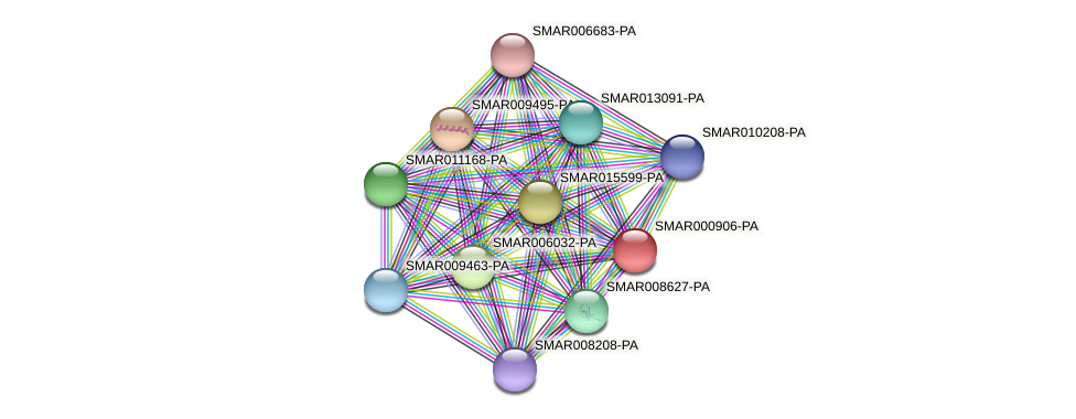 SMAR000906-PA protein (Strigamia maritima) - STRING interaction network
