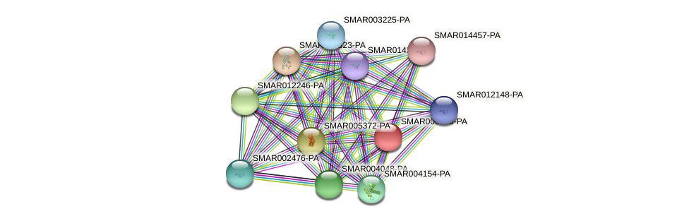 SMAR000985-PA protein (Strigamia maritima) - STRING interaction network