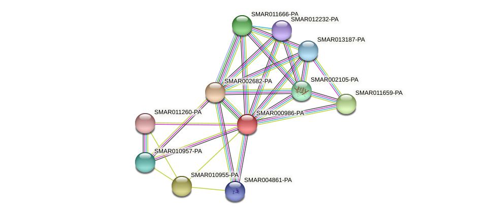 SMAR000986-PA protein (Strigamia maritima) - STRING interaction network