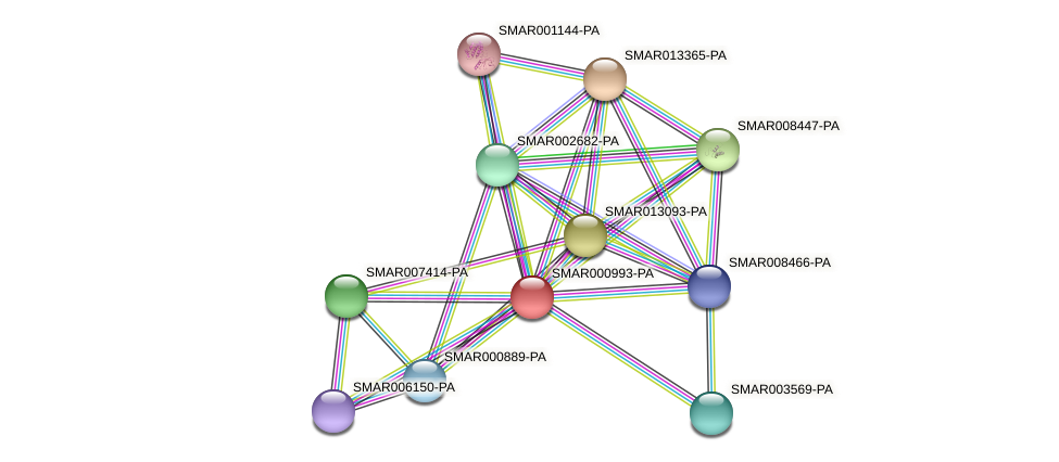SMAR000993-PA protein (Strigamia maritima) - STRING interaction network
