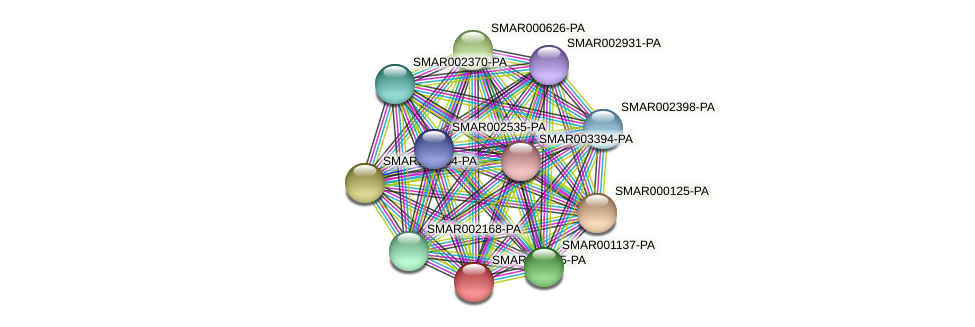 SMAR001035-PA protein (Strigamia maritima) - STRING interaction network
