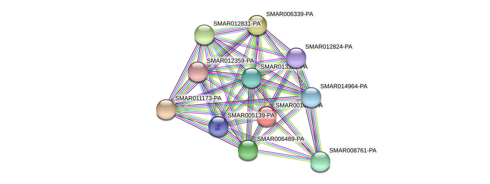 SMAR001037-PA protein (Strigamia maritima) - STRING interaction network