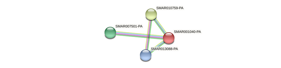 SMAR001040-PA protein (Strigamia maritima) - STRING interaction network