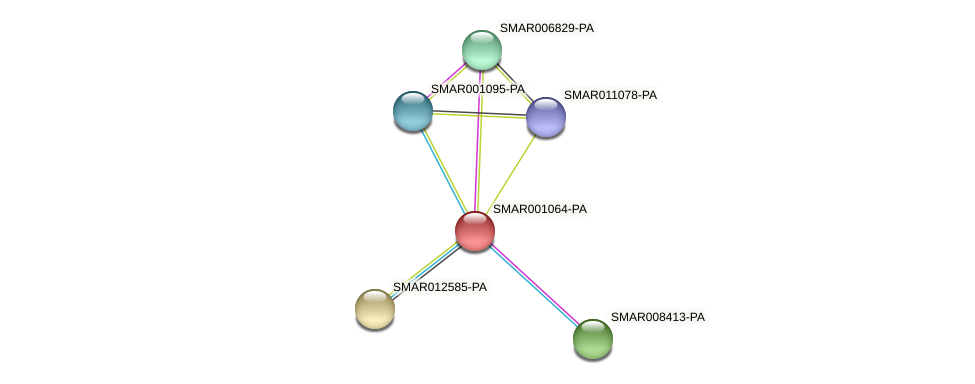 SMAR001064-PA protein (Strigamia maritima) - STRING interaction network