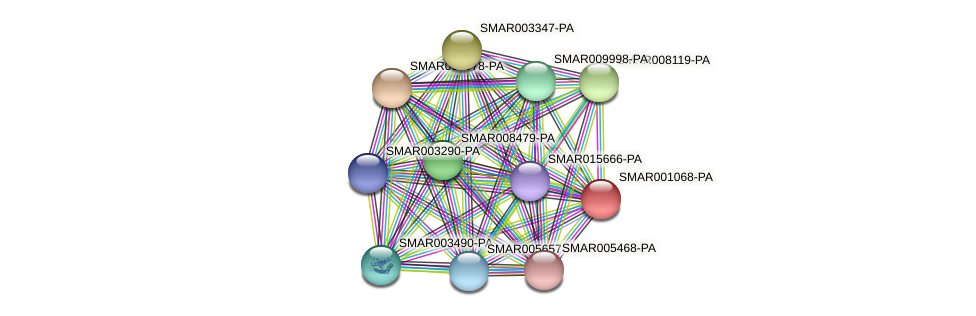 SMAR001068-PA protein (Strigamia maritima) - STRING interaction network