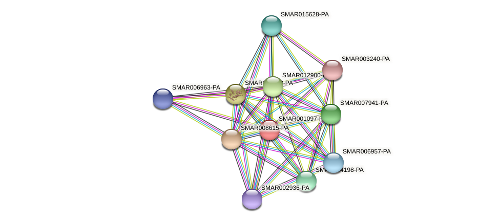 SMAR001097-PA protein (Strigamia maritima) - STRING interaction network