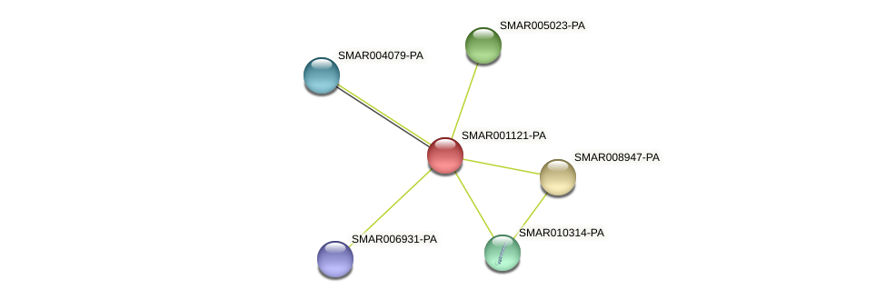 SMAR001121-PA protein (Strigamia maritima) - STRING interaction network