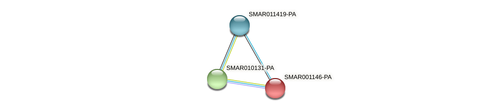 SMAR001146-PA protein (Strigamia maritima) - STRING interaction network