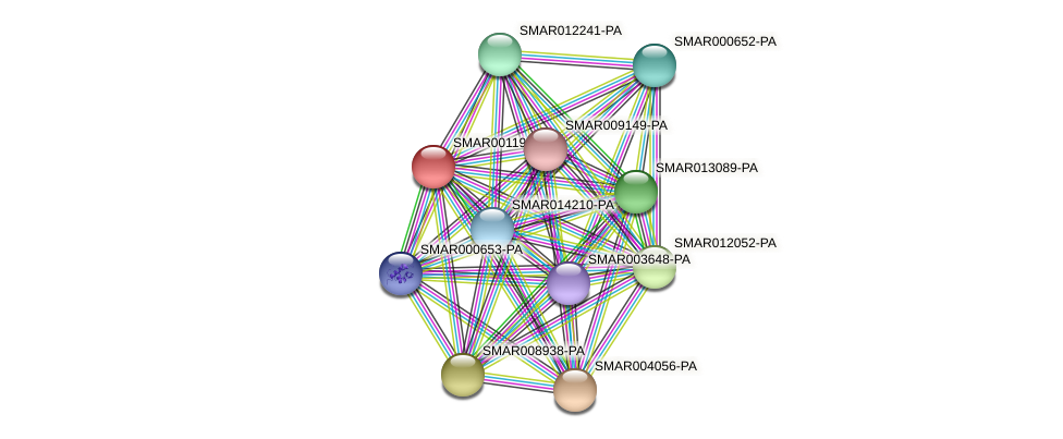 SMAR001190-PA protein (Strigamia maritima) - STRING interaction network
