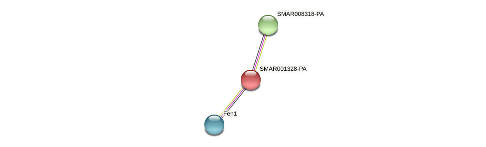 SMAR001328-PA protein (Strigamia maritima) - STRING interaction network