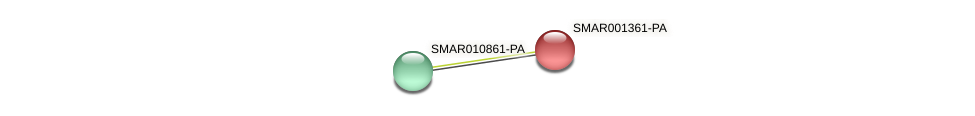 SMAR001361-PA protein (Strigamia maritima) - STRING interaction network