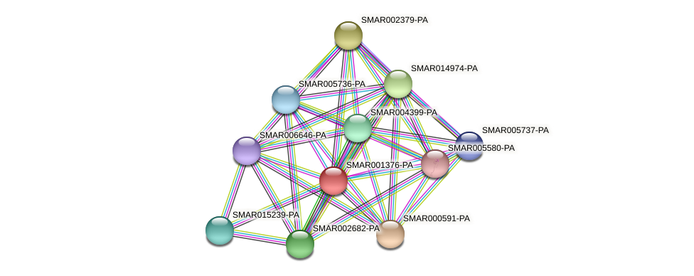 SMAR001376-PA protein (Strigamia maritima) - STRING interaction network
