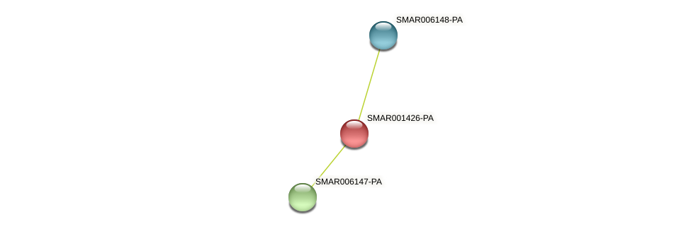 SMAR001426-PA protein (Strigamia maritima) - STRING interaction network