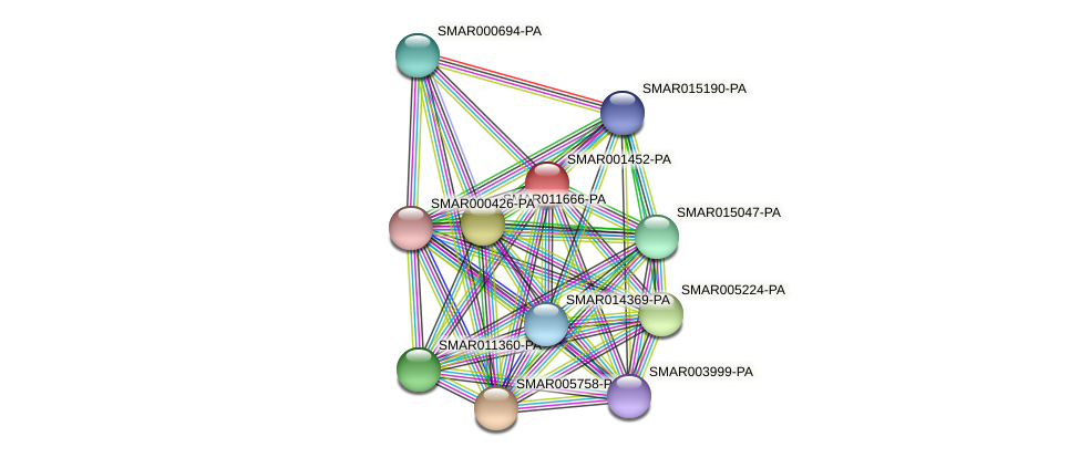 SMAR001452-PA protein (Strigamia maritima) - STRING interaction network