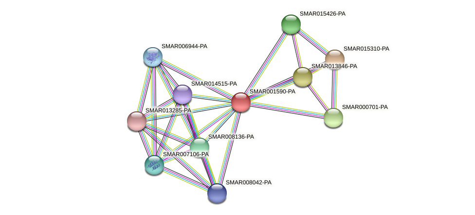 SMAR001590-PA protein (Strigamia maritima) - STRING interaction network
