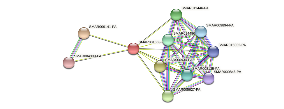 SMAR001663-PA protein (Strigamia maritima) - STRING interaction network
