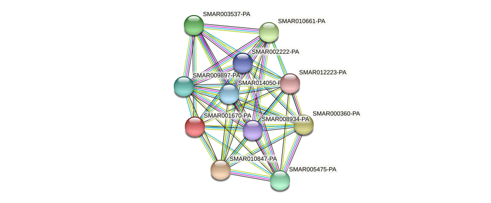 SMAR001670-PA protein (Strigamia maritima) - STRING interaction network