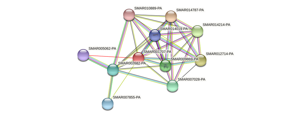 SMAR001707-PA protein (Strigamia maritima) - STRING interaction network