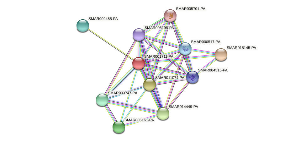 SMAR001711-PA protein (Strigamia maritima) - STRING interaction network