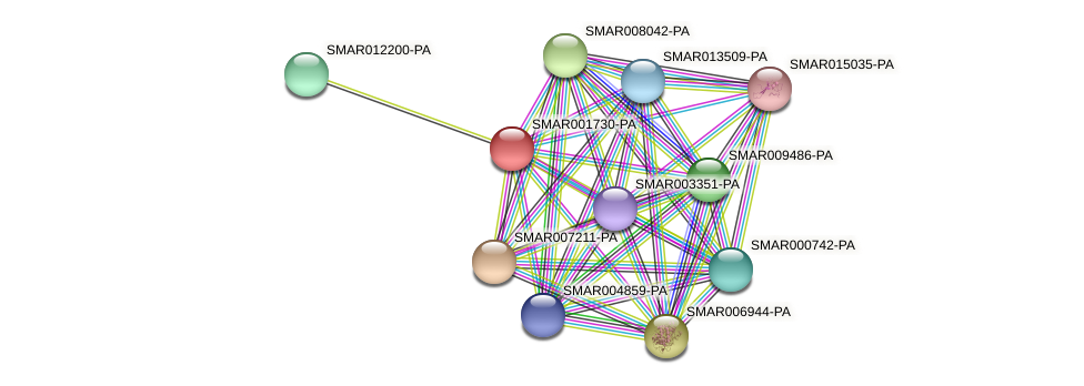 SMAR001730-PA protein (Strigamia maritima) - STRING interaction network