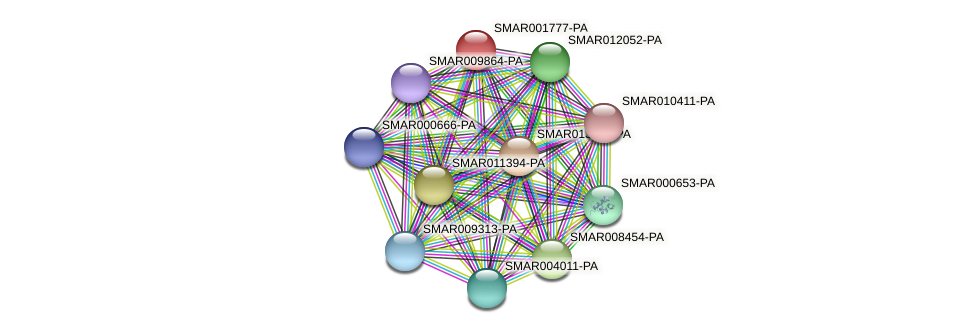 SMAR001777-PA protein (Strigamia maritima) - STRING interaction network
