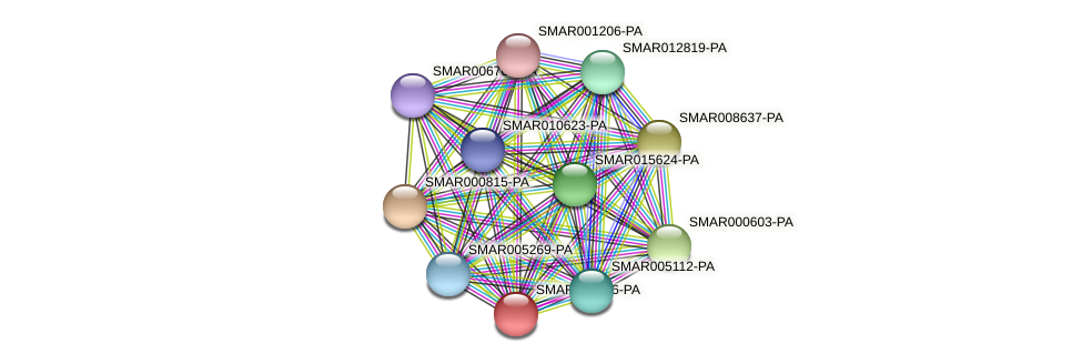 SMAR001836-PA protein (Strigamia maritima) - STRING interaction network