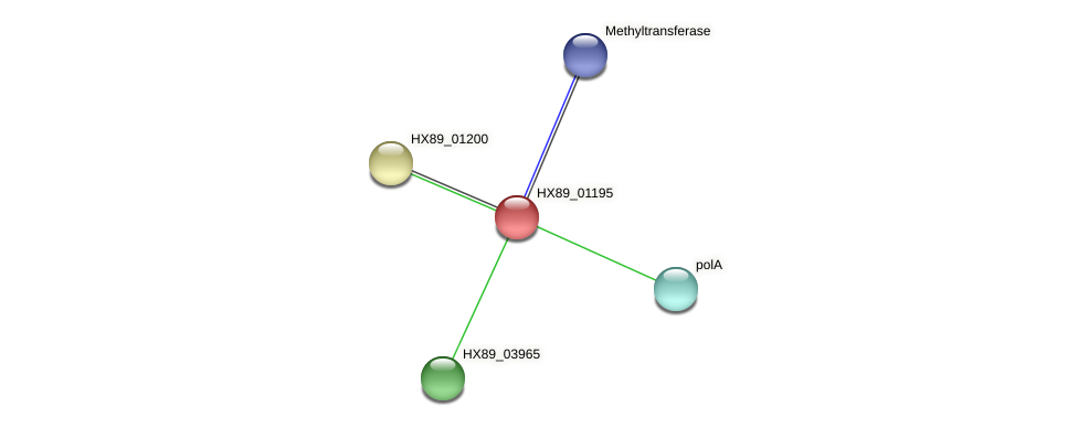 HX89_01195 protein (Dermacoccus nishinomiyaensis) - STRING interaction network