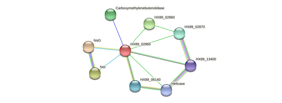 HX89_02865 protein (Dermacoccus nishinomiyaensis) - STRING interaction network