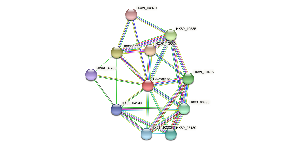HX89_04935 protein (Dermacoccus nishinomiyaensis) - STRING interaction network