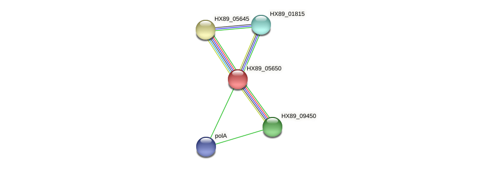 HX89_05650 protein (Dermacoccus nishinomiyaensis) - STRING interaction network