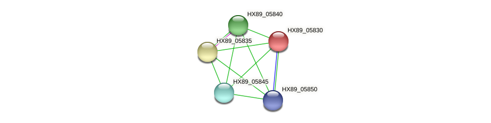 HX89_05830 protein (Dermacoccus nishinomiyaensis) - STRING interaction network