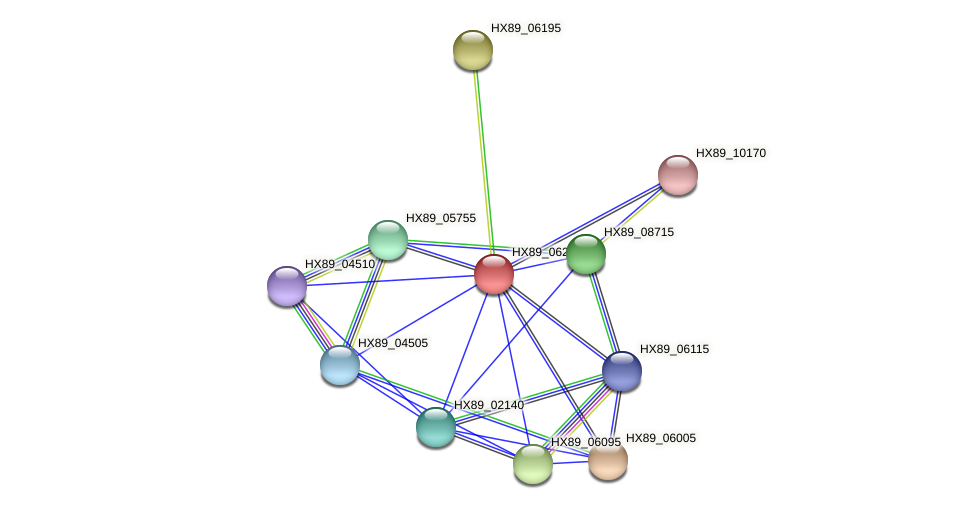 HX89_06205 protein (Dermacoccus nishinomiyaensis) - STRING interaction network