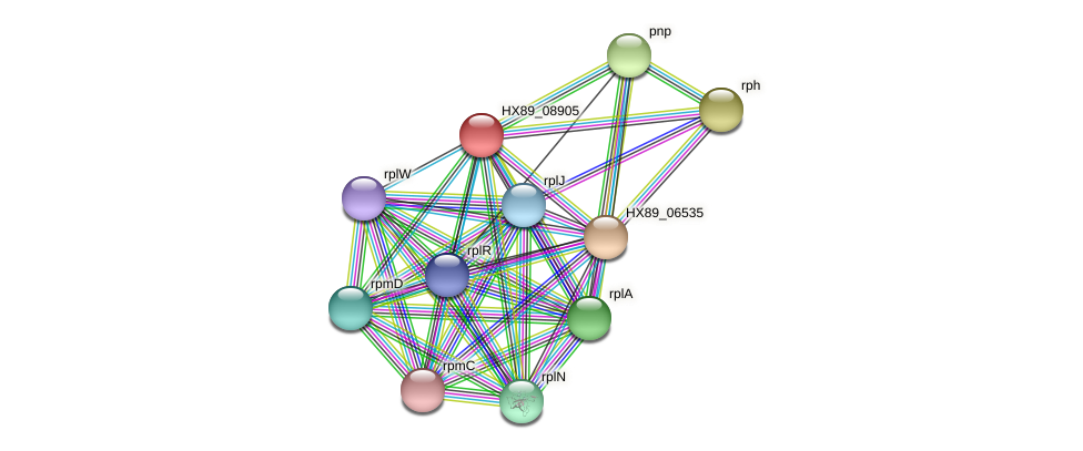 HX89_08905 protein (Dermacoccus nishinomiyaensis) - STRING interaction network