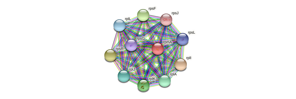 rpmA protein (Dermacoccus nishinomiyaensis) - STRING interaction network