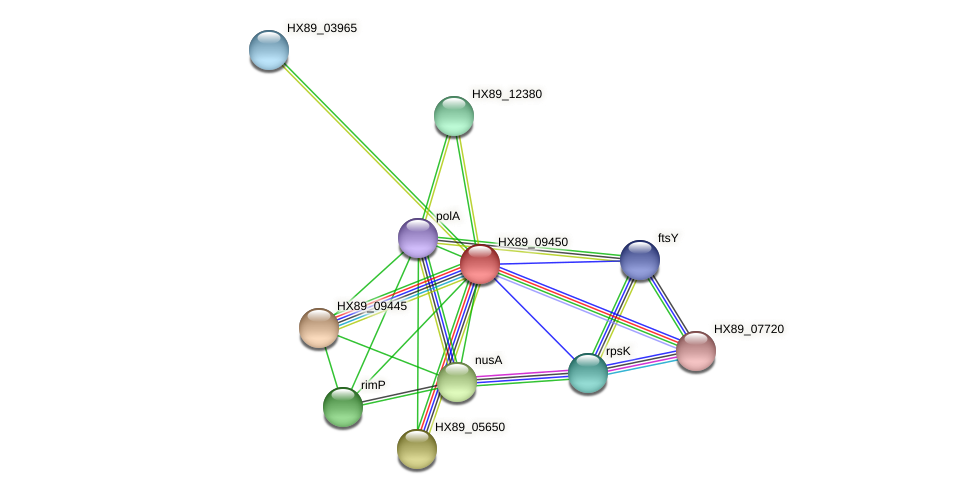 HX89_09450 protein (Dermacoccus nishinomiyaensis) - STRING interaction network