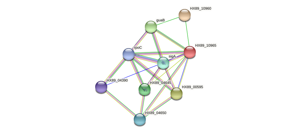 HX89_10965 protein (Dermacoccus nishinomiyaensis) - STRING interaction network