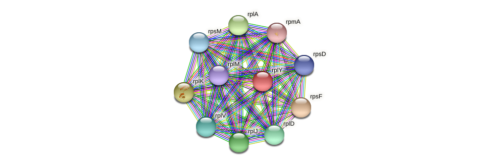 ctc protein (Dermacoccus nishinomiyaensis) - STRING interaction network