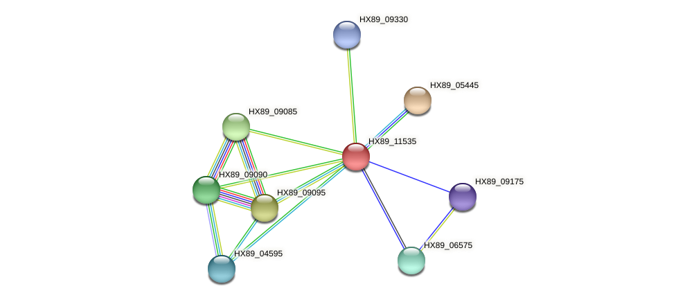 HX89_11535 protein (Dermacoccus nishinomiyaensis) - STRING interaction network