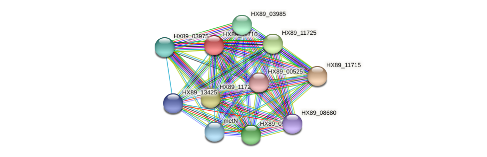 HX89_11710 protein (Dermacoccus nishinomiyaensis) - STRING interaction network