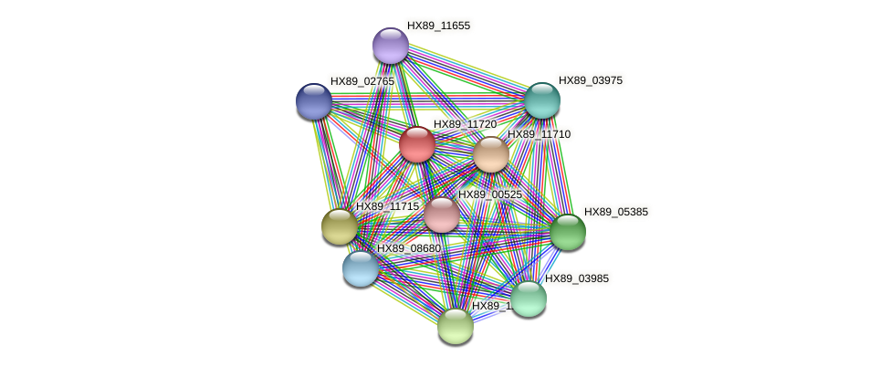 HX89_11720 protein (Dermacoccus nishinomiyaensis) - STRING interaction network