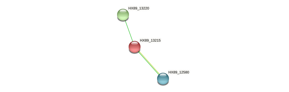 HX89_13215 protein (Dermacoccus nishinomiyaensis) - STRING interaction network