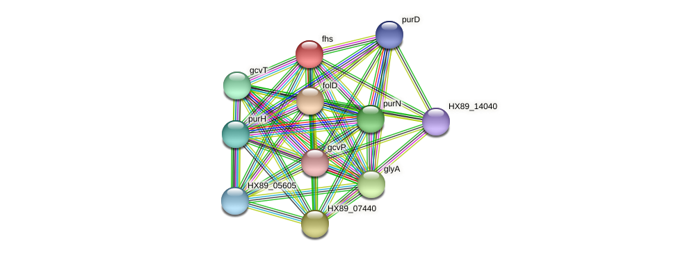 fhs protein (Dermacoccus nishinomiyaensis) - STRING interaction network