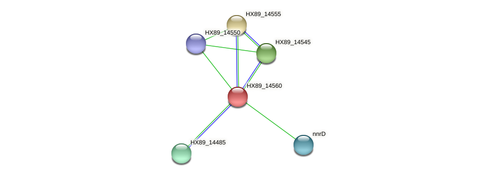 HX89_14560 protein (Dermacoccus nishinomiyaensis) - STRING interaction network