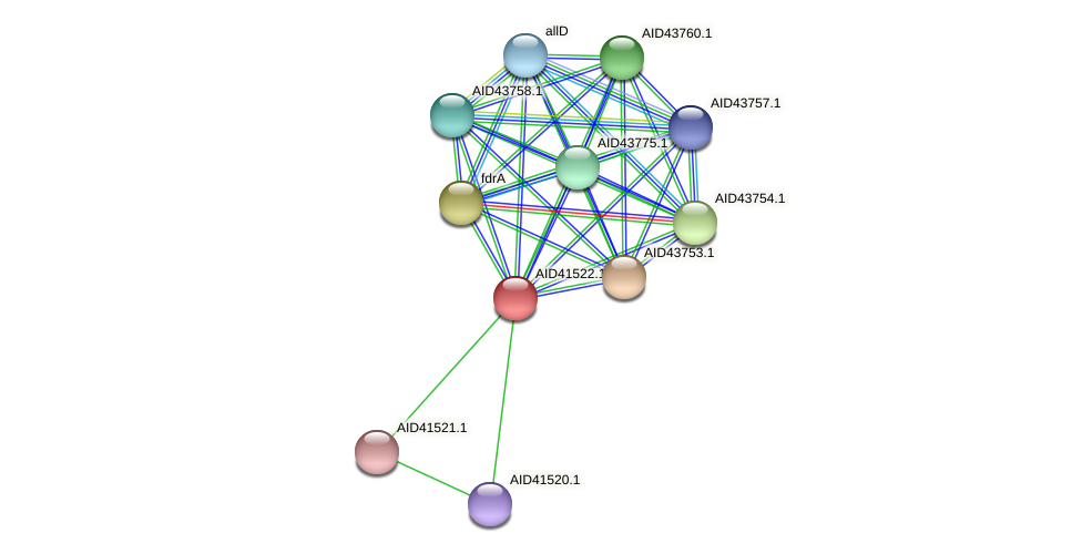 AID41522.1 protein (Staphylococcus xylosus) - STRING interaction network