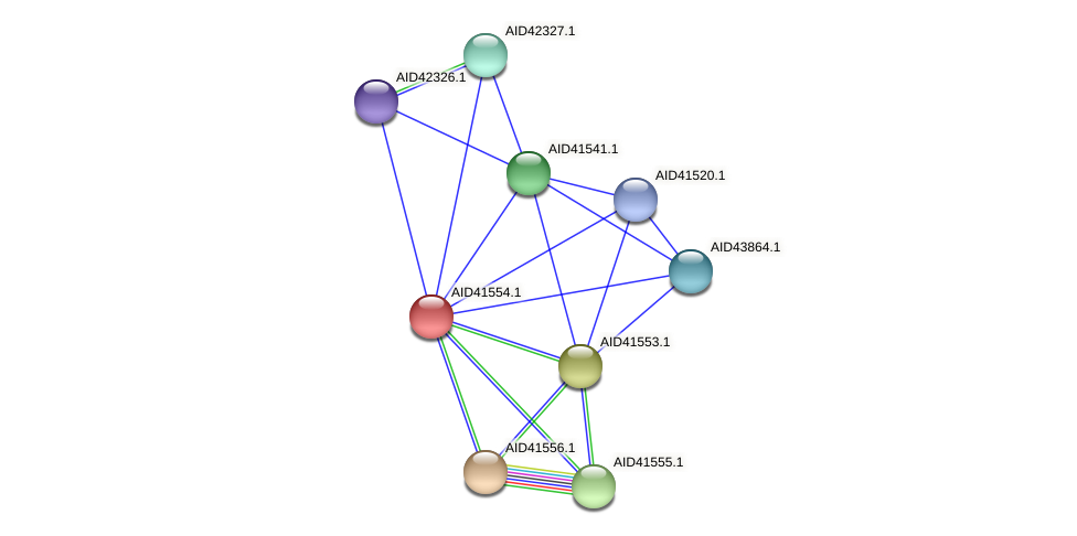 AID41554.1 protein (Staphylococcus xylosus) - STRING interaction network